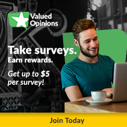 Take surveys at Valued Opinions and Get paid up to $5 per survey!